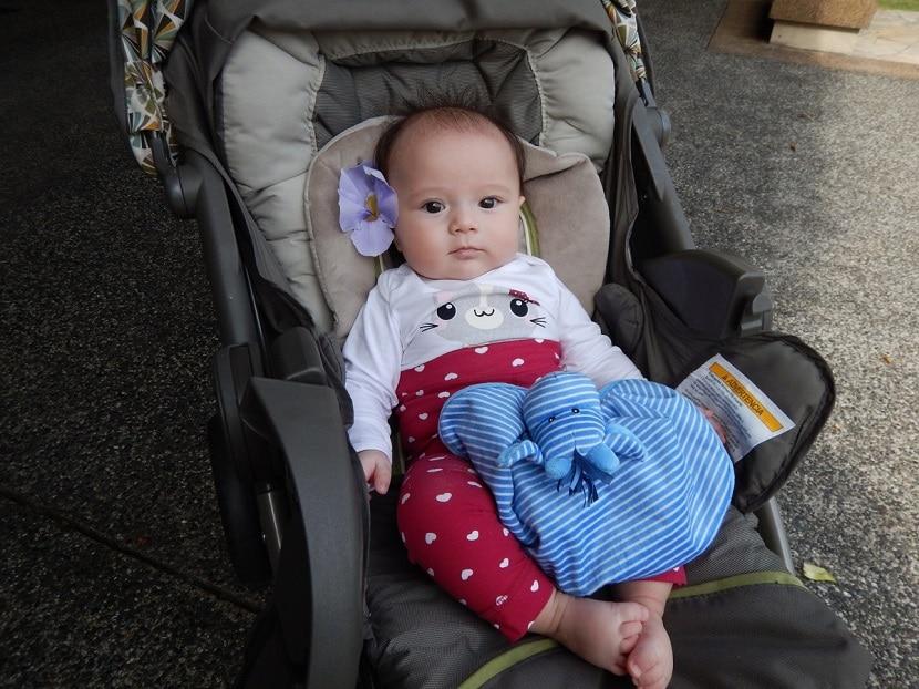 consejos para elegir carrito de bebe economico